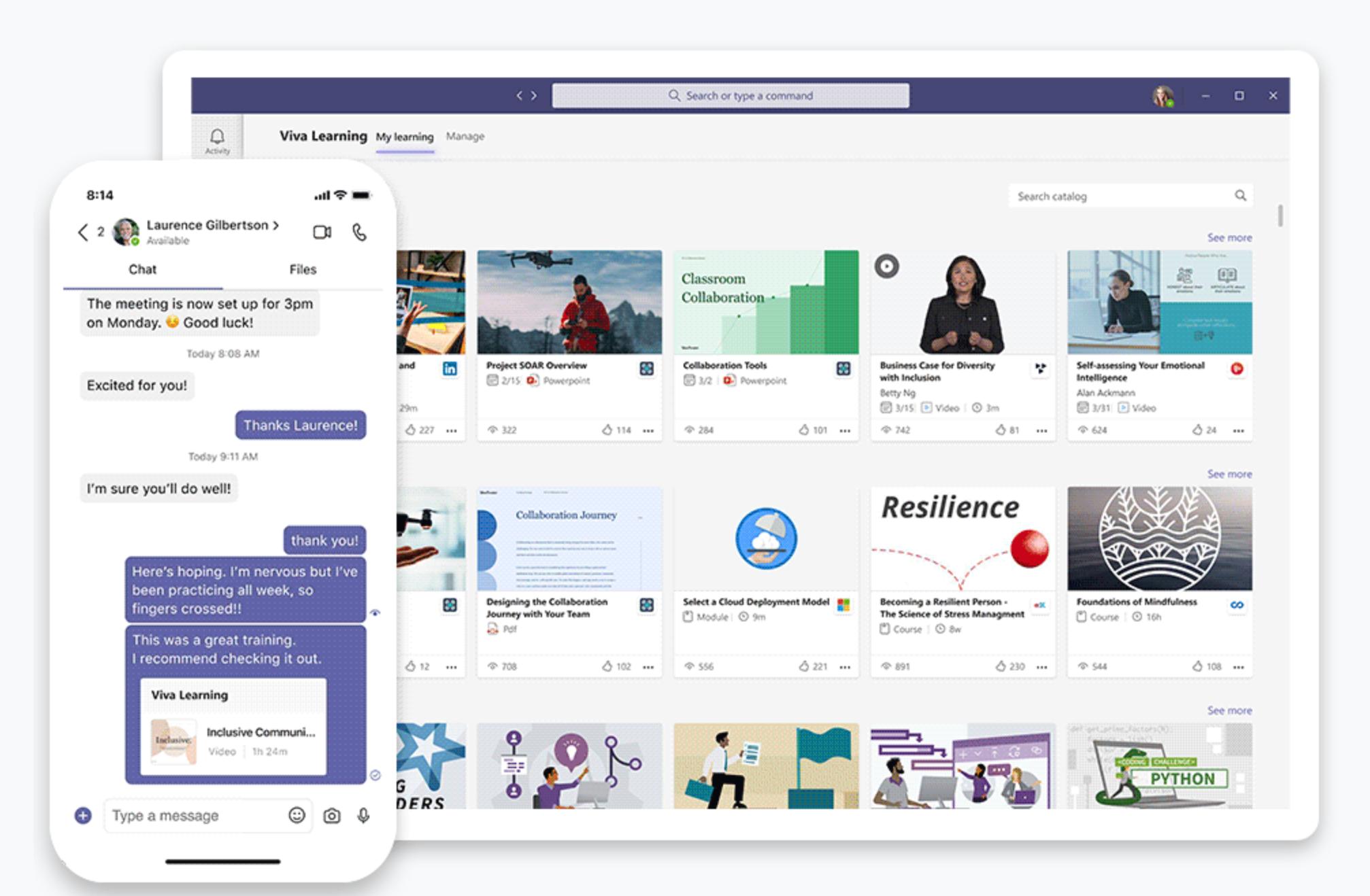 Screenshot Viva Learning
